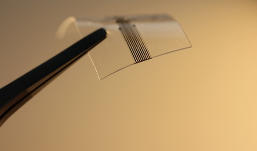 das 3D-gedruckte neuronale Implantat
