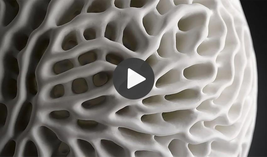 Biomimikry