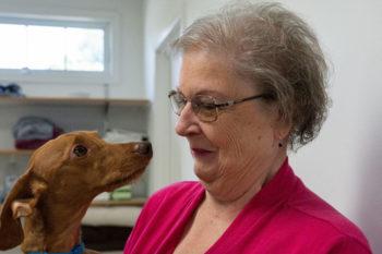 Tiermedizin und 3D-Druck - Operationsmodelle für Haustiere hergestellt mit Additiver Fertigung