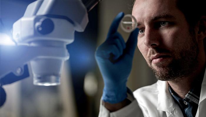 3D-Biodruck bei Cellbricks