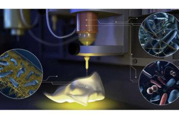ETH entwickelt 3D-Druck mit Bakterien