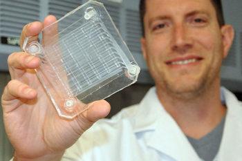 Eine künstliche Lunge in 3D gedruckt