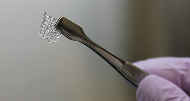 3D gedruckte Eierstöcke