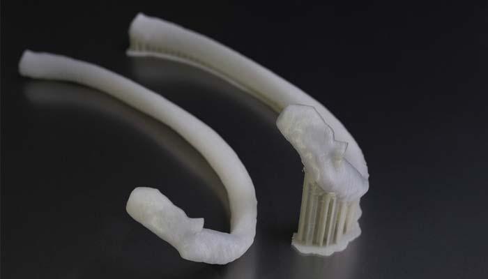 3D-gedruckte Rippe