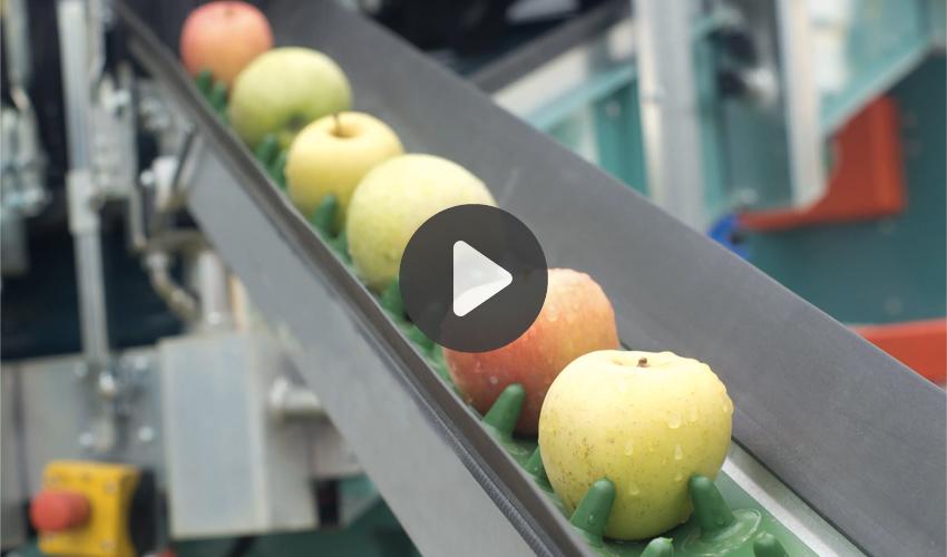 Food plant 3D scanning