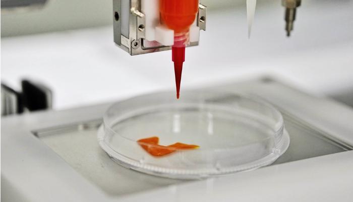 CellX startup bio-printing meat