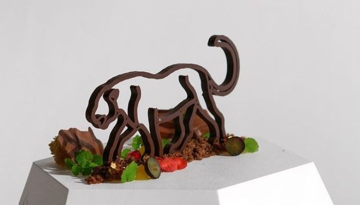 chocolate tiger