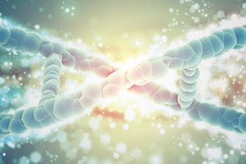 3DBiotech, additive manufacturing in regenerative medicine
