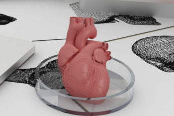 £21M 3D Printed Model Installation in Bristol Biomedical Centre