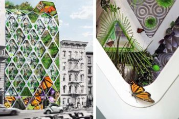 Giant 3D printed butterfly sanctuary building in New York City