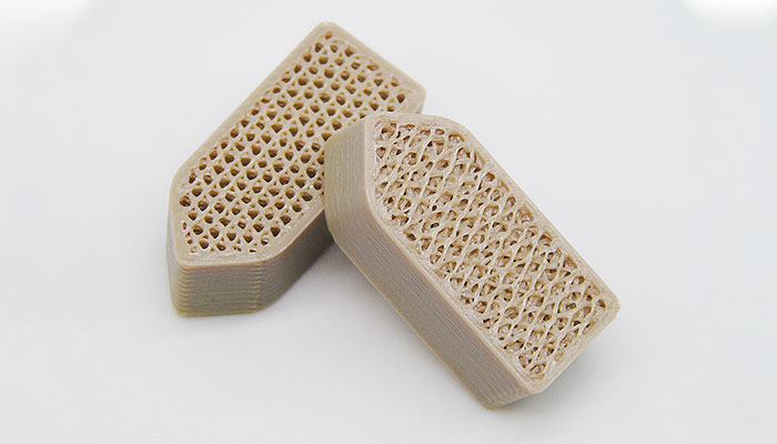 3D printed porous scaffold