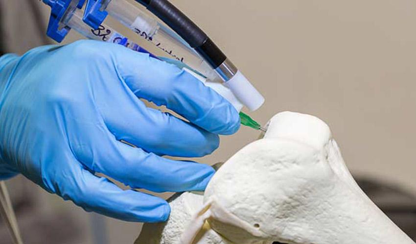 3D printing bone