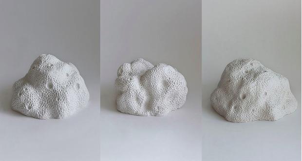 3D printed coralise