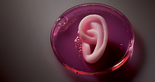 Is 3D bioprinting the future of tailor-made medicine?