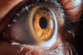 3D printed corneas to prevent corneal blindness