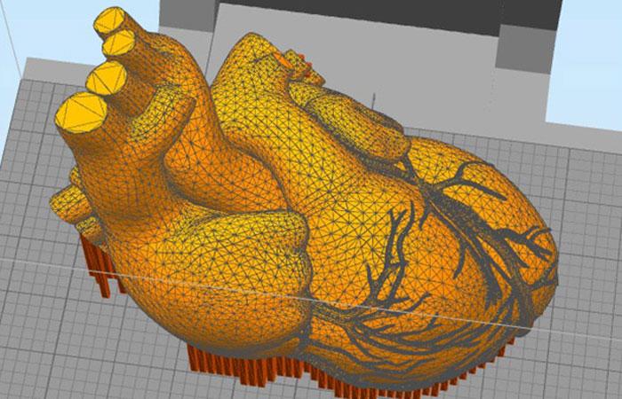 Simplify3D slicer software