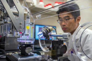 Wake Forest researchers create lab model of the human body