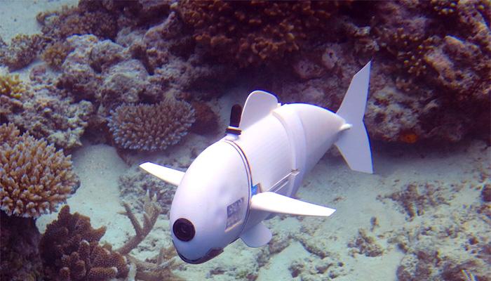 pez robótico