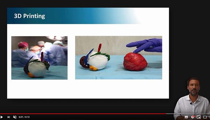 Expert 3D, die medizinische 3D-Expertenausbildung