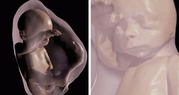 Experiencia de realidad virtual para ver al bebé