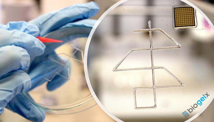 Biotintas Biogelx