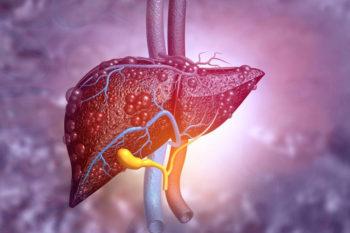 Desarrollan un mini hígado impreso en 3D en 90 días