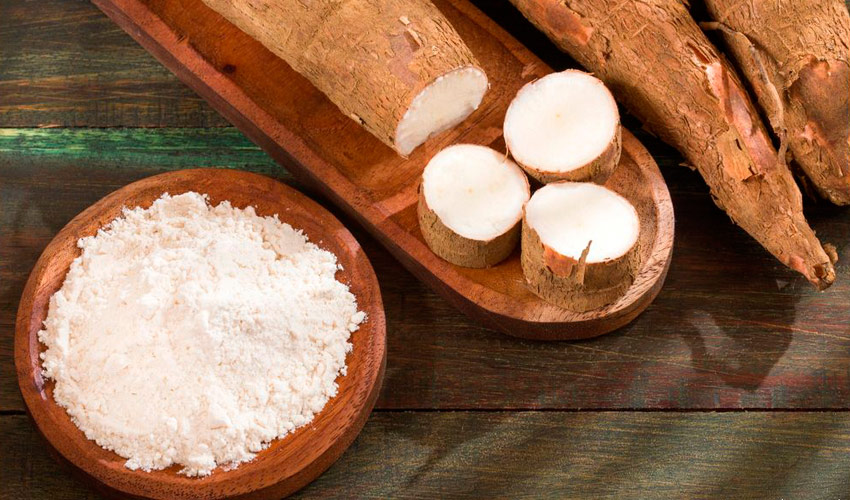 amidon de manioc
