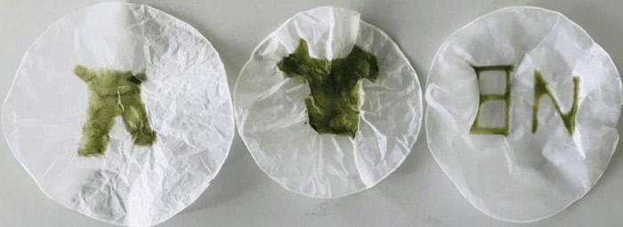 bioprinting living material