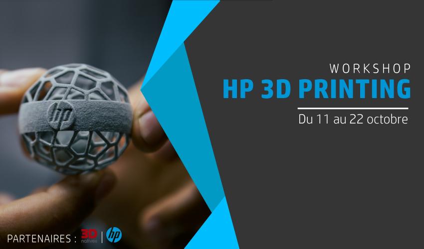 workshop hp 3D printing