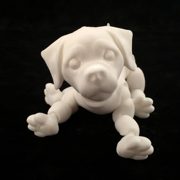 8.Puppy-Jazmy