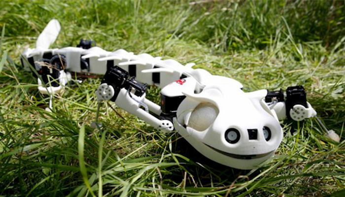 Biorobotics crée des robots qui imitent les mouvements de la nature -  3Dnatives