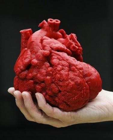 Le coeur de Roland imprimé en 3D