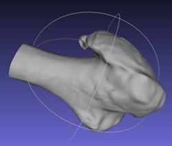 Le site propose de convertir des images médicales en fichiers 3D imprimables