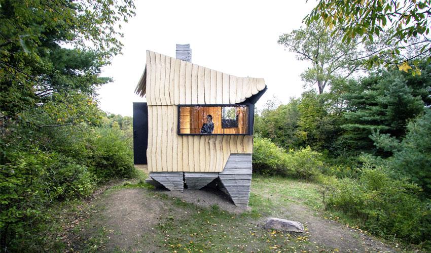 ashen cabin