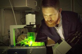 Une équipe d'ingénieurs bio-impriment des ligaments et des tendons