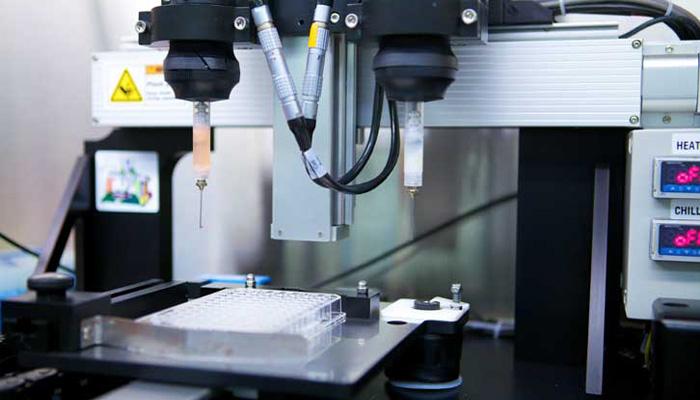 cerveau imprimé en 3D