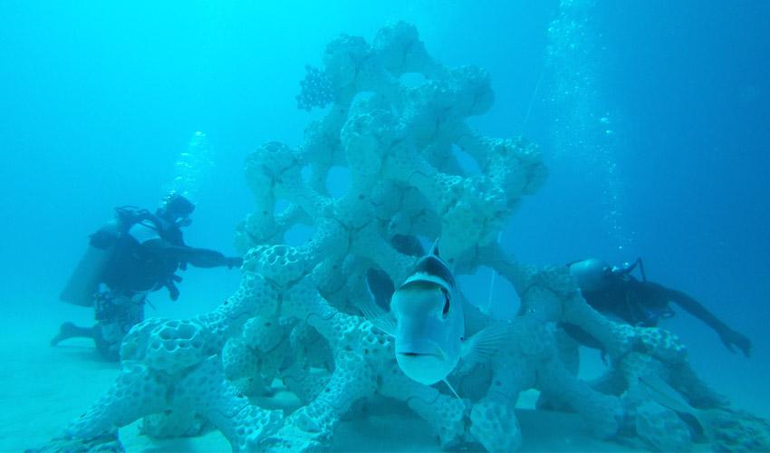 récif corallien imprimé en 3D