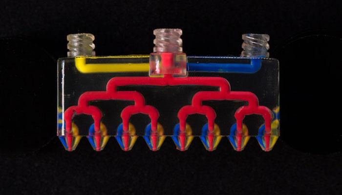 imprimante 3D multi-buses