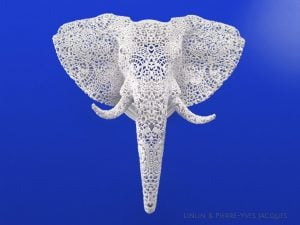 lpjacques-photo-elephant-face-uni-web
