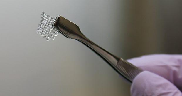 ovaires imprimés en 3D